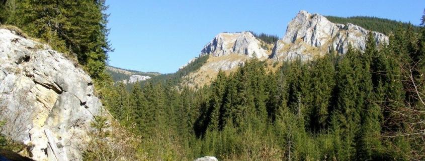 muntii apuseni pietrele albe
